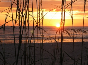 Sunrise on the Gulf of Mexico Photo courtesy of Extremecoast.com