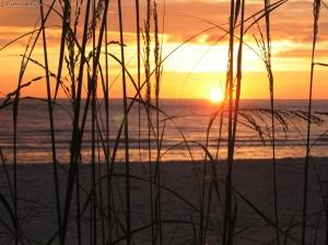 Sunrise on the Gulf of Mexico Photo courtesy of Extremecoast.com