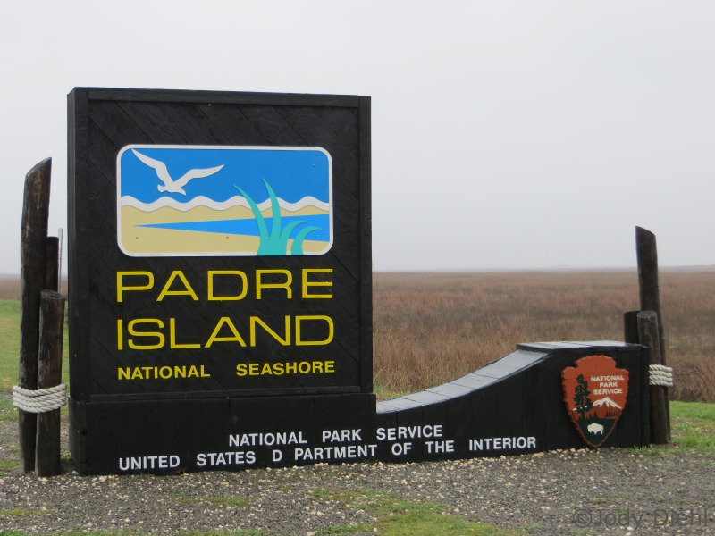 Welcome to Padre Island National Seashore